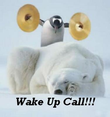 early_morning_wake-up_call.jpg